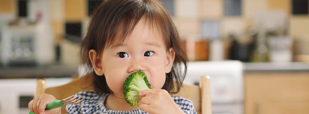 Qual a alimentação ideal para crianças a partir de um ano?