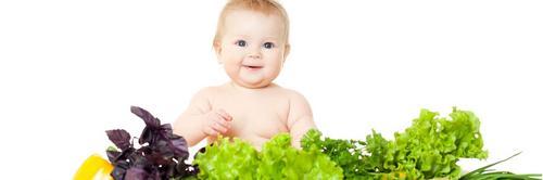 Dicas e receitas para preparar a papinha do bebê
